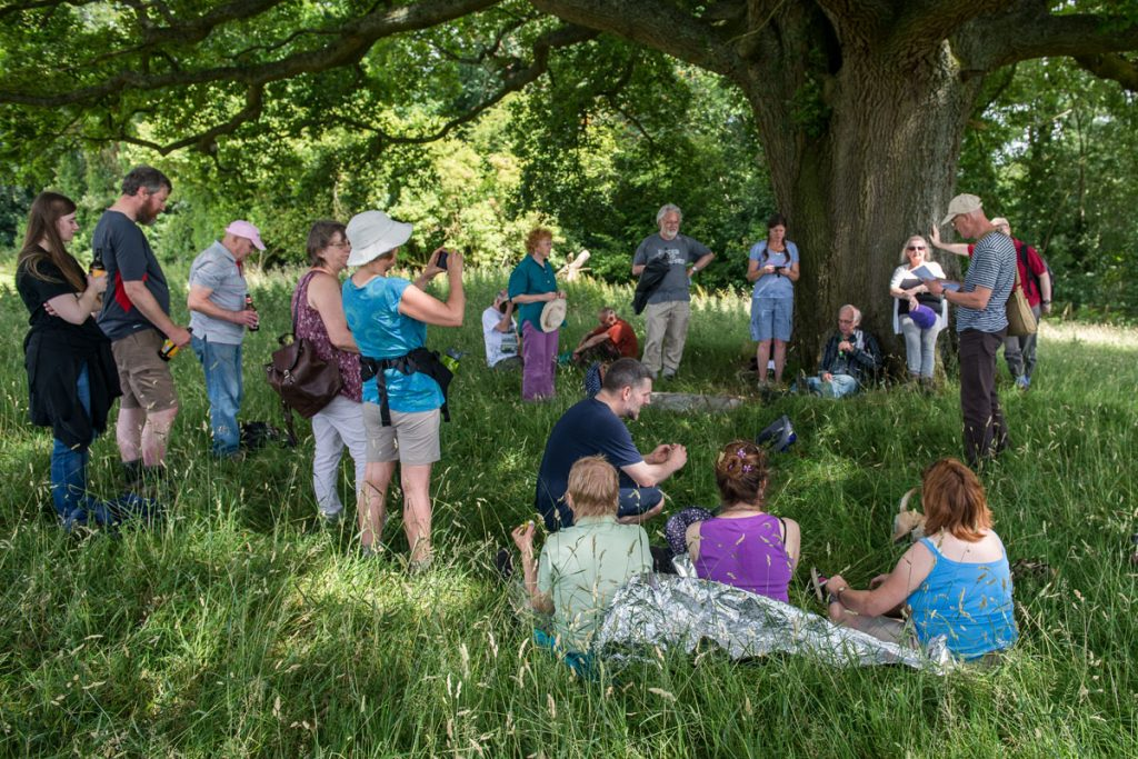Folk under the Oak