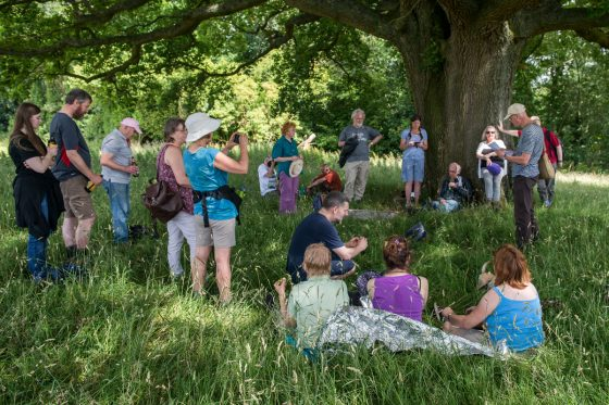 Folk under the Oak